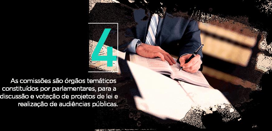 As comissões são órgãos temáticos constituídos por parlamentares, para a discussão e votação de projetos de lei e realização de audiências públicas.